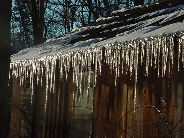 january-icicles-23.jpg